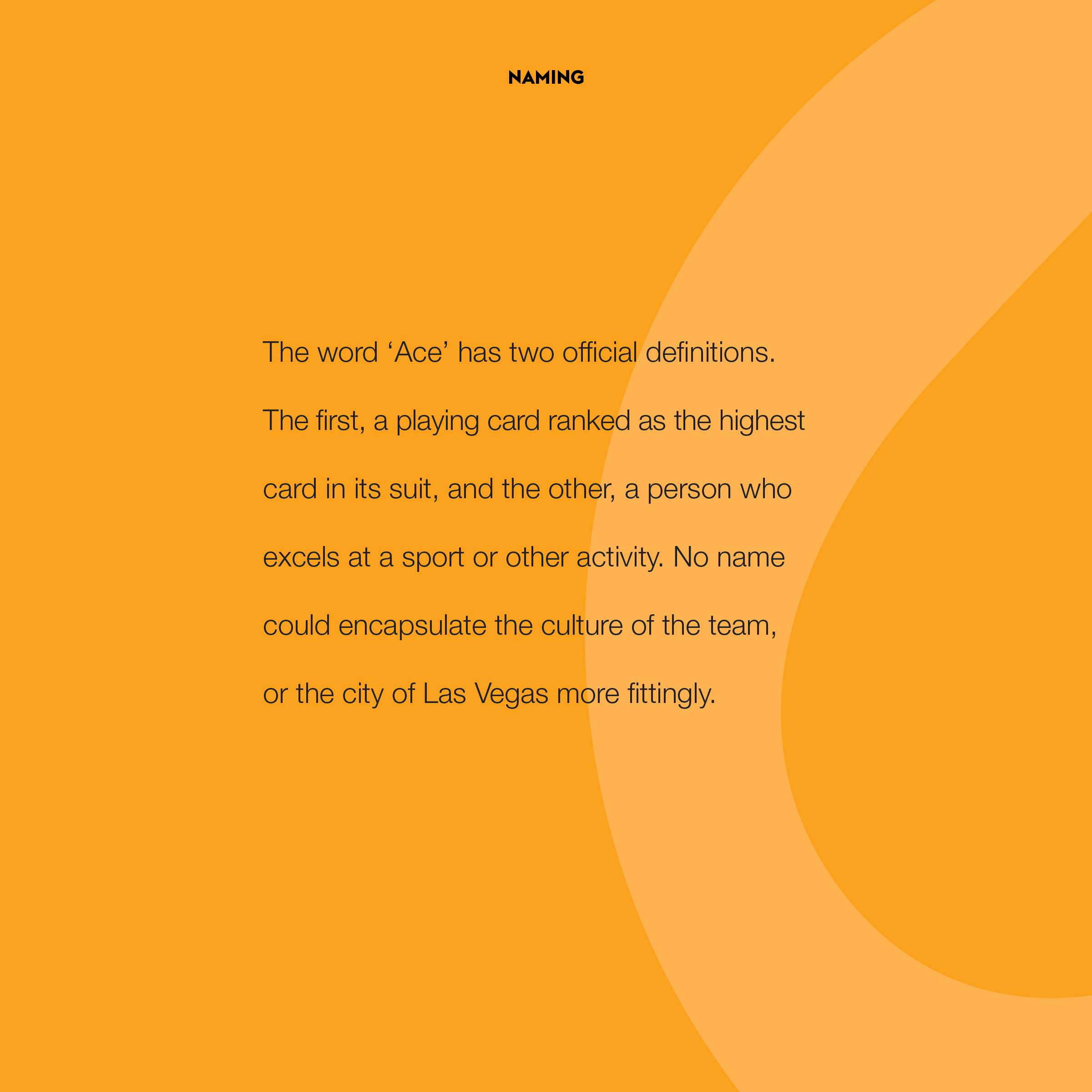 thesis – brand book – final2